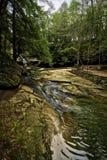 Cedar Falls royaltyfria bilder