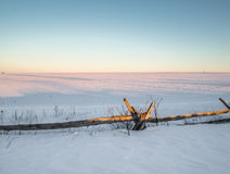 Cedar Fence Winter Sunset. With snow covered farm field Royalty Free Stock Photography