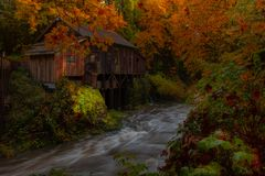 Cedar Grist Mill. Autumn at the Cedar Grist Mill, the fall colors were nothing short of magical royalty free stock photo