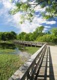 Cedar hill state park - Fishing bridge. Cedar hill state park; Fishing Bridge;bridge leads wooden background retro narrow field, crossing road , wide path stock photos