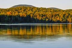 Cedar Lake Reflections Adirondack Forest Preserve, New York arkivbild