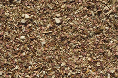 Cedar Mulch Shavings. For Use as Background Royalty Free Stock Images