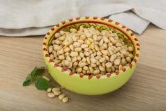 Cedar nut Stock Photos
