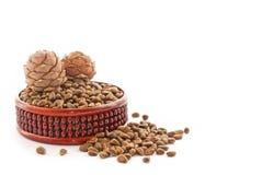 Cedar nutlets Stock Image