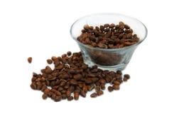 Cedar nutlets Stock Photo