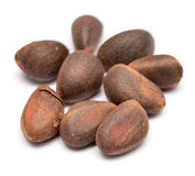 Cedar nuts Royalty Free Stock Photo