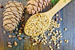Cedar nuts refined in spoon on board Stock Images