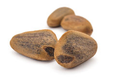 Cedar nuts Royalty Free Stock Photography