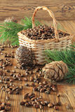 Cedar nuts in a wicker basket on a wooden table stock photography