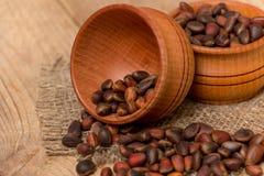 Cedar nuts Royalty Free Stock Photo