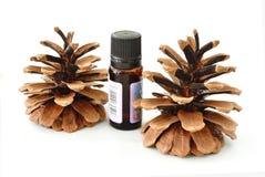 Cedar oil Stock Image