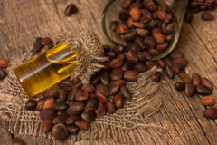Cedar oil and nuts Stock Photos