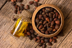 Cedar oil and nuts Stock Photography