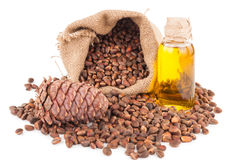 Cedar oil and nuts Stock Image