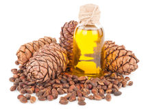Cedar oil and nuts Royalty Free Stock Image