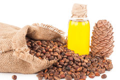 Cedar oil and nuts Royalty Free Stock Photography