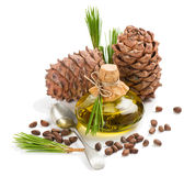 Cedar pine nuts, cones and oi Royalty Free Stock Photos