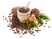 Cedar pine nuts and oil. Royalty Free Stock Photography