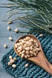Cedar pine nuts. In a wooden spoon royalty free stock images