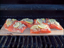 Cedar plank salmon. Salmon fillet cooked on a cedar plank in barbeque Royalty Free Stock Photos
