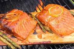 Cedar plank salmon with lemon cooking on grill. Cedar plank salmon with lemon cooking on a grill Stock Photo
