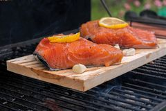 Cedar plank salmon with lemon cooking on grill Stock Photo