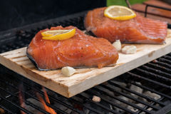Cedar plank salmon with lemon on a grill Royalty Free Stock Images