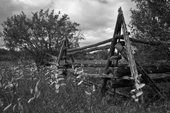 Cedar Rail Fence Royalty-vrije Stock Afbeeldingen