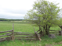 Cedar Rail Fence. Rural scene of cedar rail fence royalty free stock image