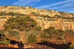 Cedar Ridge Photos stock
