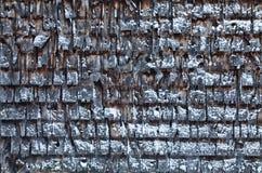 Cedar Shingles pendant un jour d'hiver froid Photos stock