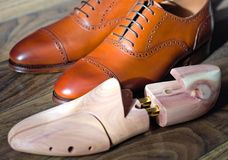 Cedar shoetree and shoes. Wooden shoetree for men`s shoes and brown oxford shoes Stock Images