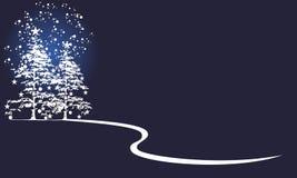 Cedar Tree Background Image stock