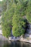 Cedar Trees on Limestone Rock Cliff River Water Transportation Stock Images