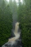 Cedar Trees and Waterfall Stock Photo