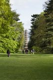 Cedar Vista och stora pagodKew trädgårdar Royaltyfria Foton
