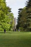 Cedar Vista y grandes jardines de Kew de la pagoda Fotos de archivo libres de regalías