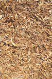Cedar wood chip background Stock Images