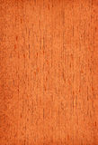 Cedar (wood texture) Royalty Free Stock Photography