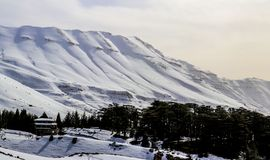 The Cedars in Lebanon in the winter of 2018 stock images