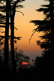 Cedars Sunset, Lebanon stock image