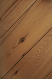 Ceder Wood Texture