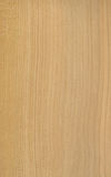 Ceder wood veneer texture Royalty Free Stock Photo