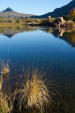 cederberg湖 库存照片