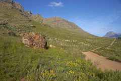 Cederberg. Gravel road through the remote Cederberg region of the Western Cape in South Africa Royalty Free Stock Photography