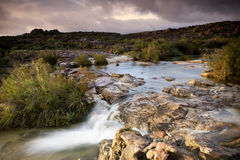 Cederberg Stream. A peaceful stream at dusk in the Cederberg mountain range, Western Cape, South Africa Stock Photography