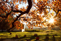 Cederberg sunset Stock Photo