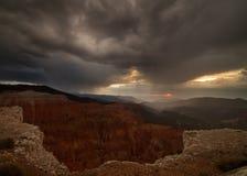 Cederträ bryter amfiteatern under mörka stormiga himlar på solnedgången royaltyfri foto