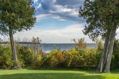 Cederträ inramar dramatisk himmel över Lake Michigan Fotografering för Bildbyråer