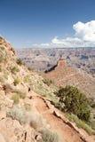 Cedro Ridge, grande canyon Fotografia Stock